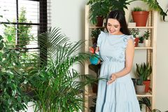 Glimlachende vrouw die binneninstallaties bespuiten royalty-vrije stock foto