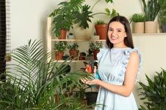Glimlachende vrouw die binneninstallaties bespuiten royalty-vrije stock foto's
