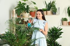 Glimlachende vrouw die binneninstallaties bespuiten stock fotografie