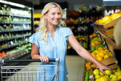 Glimlachende vrouw die citroen nemen Royalty-vrije Stock Afbeelding