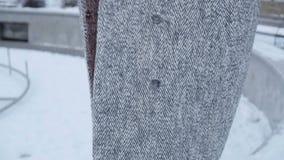 Glimlachende vrouw op de winterdag stock footage