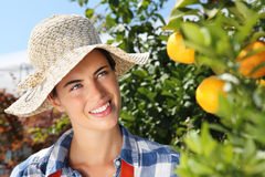Glimlachende vrouw, tak met mandarins op boom in boomgaard Stock Fotografie