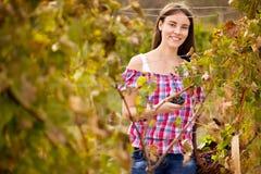 Glimlachende vrouw in wijngaard stock foto
