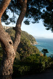 Glimpse of the sea in Rapallo Royalty Free Stock Photography