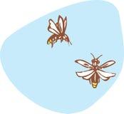 Glimworm royalty-vrije illustratie