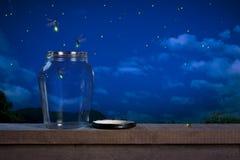 Glimwormen bij nacht Royalty-vrije Stock Foto's