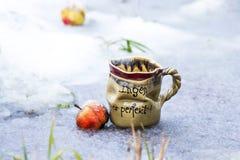 Gliniana kawa lub herbaciany sup Zdjęcia Royalty Free