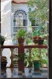 Gliniani garnki z kwiatami na starym balkonie Zdjęcia Stock