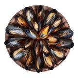 Gliniany naczynie z gotowanymi mussels odizolowywającymi na bielu fotografia royalty free