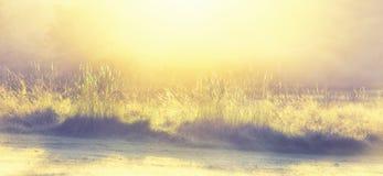 Glinting παγωμένο πρωί Ιανουαρίου γωνίας χλόης χαμηλό Στοκ Φωτογραφίες