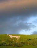 Glissement de coup outre du cheval blanc de Westbury Photos stock