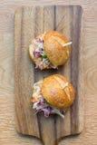 Glisseurs d'hamburger Image stock