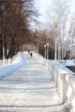 glissière de glace dans l'allée de parc Photos stock