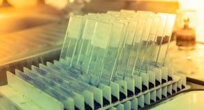 Glissière en verre médicale de microscope de la Science avec l'échantillon photos libres de droits