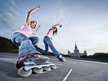 Glissière jumelle Photo libre de droits