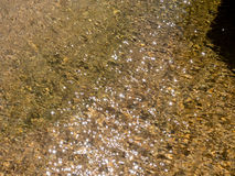 Glistering water texture. Stock Images