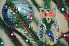Glitter quilled little owl hanging on a spruce branch Stock Image