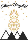 Glitter shimmery pineapple print with shine bright Royalty Free Stock Photo