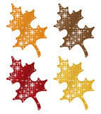 Glittering Autumn Leaves Royalty Free Stock Image