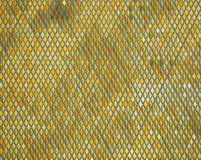 Glittering background of golden rhombus squares texture Royalty Free Stock Photo