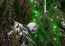 Glittering Christmas ball on green Xmas tree Stock Photos