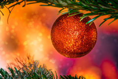 Glittering Christmas bauble in red color. On a tree Stock Images