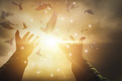 Glittering light and shines through hands of man who raise their hands to pray for God`s blessings and free pigeons,sunset