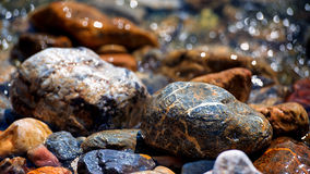 Glittering pebbles. Close up of wet beach pebbles Stock Images