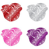 Glittering Roses Stock Photos