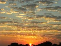 Glittering sky Stock Image