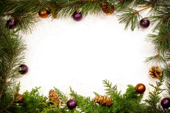 Glittery Christmas foliage frame Stock Images