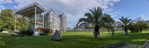 Gliwice - Palm House in Chopin Park. Stock Photo