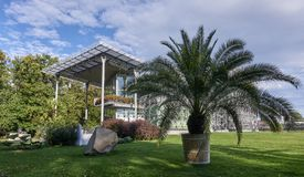 Gliwice - Palm House in Chopin Park. Stock Image