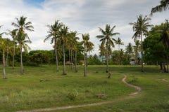 Glli在巴厘岛印度尼西亚附近的空气海岛 免版税库存图片
