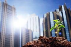 Globaal het verwarmen en klimaatveranderingconcept royalty-vrije stock foto