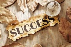 Globaal succesconcept Stock Foto