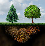 Global Agreement. Shaking hands concept as two different trees from diverse regions showing underground roots coming together in a handshake as a symbol for royalty free illustration
