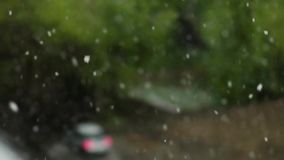 Global climate change. summer snow. Falling on the background of green trees in the city view from the window stock video