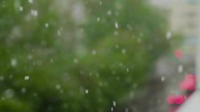 Global climate change. summer snow. Falling on the background of green trees in the city stock video footage