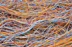 Global computer network connections. Information chaos Stock Photography