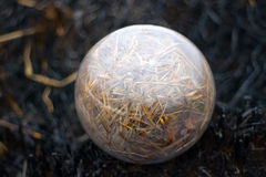 Global concept early spring fires and burnt grass Stock Image