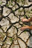 Global crisis crack. Drought in danger Stock Photography