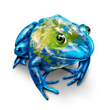 Global Earth Frog. With a map of the planet as an environmental conservation symbol for the protection of nature and all living things that are endangered due Royalty Free Stock Photo