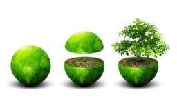Global ecology Royalty Free Stock Photo