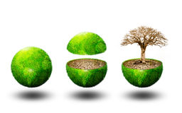 Global ecology Royalty Free Stock Image