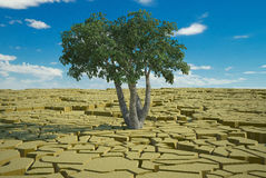 Global food crisis and drought warning. 3d high quality rendering Royalty Free Stock Images