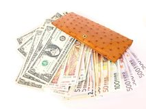 Global rich. Isolated big luxurious ostrich purse with loads of euro, dollar and rand notes Stock Photo