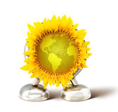 Global sunflower Royalty Free Stock Image