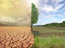 global värme Arkivfoto