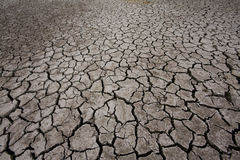 Global warming. Cracked earth - concept image of global warming Royalty Free Stock Images